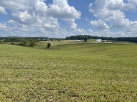 83.84 Acres with Farm House and Barns featured photo 8