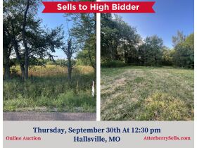 22 +/- ac. Open & Wooded With Blacktop Frontage - Sells to the High Bidder, 8800 E. Old Hwy. 124, Hallsville, MO featured photo 1