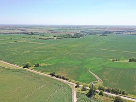 311 Acres, SE Sumner Co KS: Tillable | Pasture | Hunting Potential featured photo 4