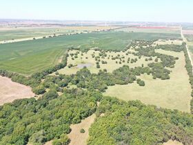311 Acres, SE Sumner Co KS: Tillable | Pasture | Hunting Potential featured photo 1