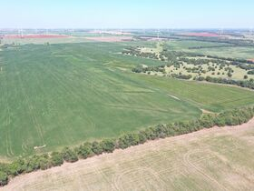 311 Acres, SE Sumner Co KS: Tillable | Pasture | Hunting Potential featured photo 7