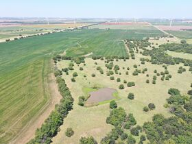 311 Acres, SE Sumner Co KS: Tillable | Pasture | Hunting Potential featured photo 9