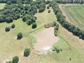 311 Acres, SE Sumner Co KS: Tillable | Pasture | Hunting Potential featured photo 12
