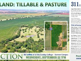 311 Acres, SE Sumner Co KS: Tillable | Pasture | Hunting Potential featured photo 2