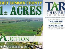 311 Acres, SE Sumner Co KS: Tillable | Pasture | Hunting Potential featured photo 3