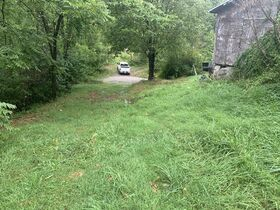 Absolute 41 Acre Harrison County Land & Cabin featured photo 9
