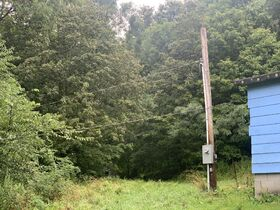 Absolute 41 Acre Harrison County Land & Cabin featured photo 10