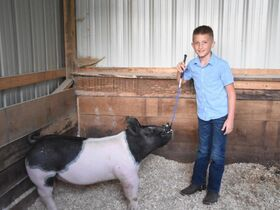 2021 Tuscarawas County Fair Jr Livestock Auction featured photo 2