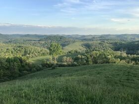 5 Bedroom Home, Harrison County, 403Acre Farm featured photo 2