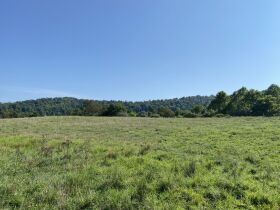 5 Bedroom Home, Harrison County, 403Acre Farm featured photo 4