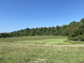 5 Bedroom Home, Harrison County, 403Acre Farm featured photo 6