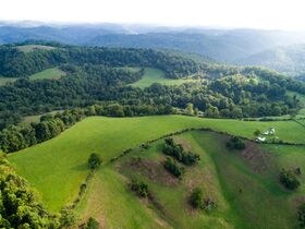 Absolute 362 Acre Farm Offered in Parcels featured photo 3