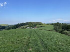 Absolute 362 Acre Farm Offered in Parcels featured photo 10
