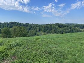 Absolute 362 Acre Farm Offered in Parcels featured photo 12