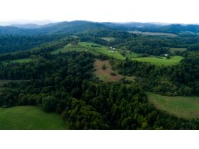 Absolute 362 Acre Farm Offered in Parcels featured photo 5