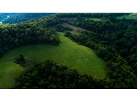 Absolute 362 Acre Farm Offered in Parcels featured photo 6