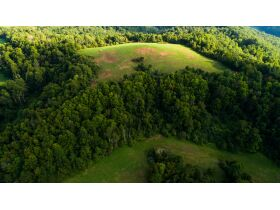 Absolute 362 Acre Farm Offered in Parcels featured photo 7