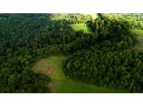 Absolute 362 Acre Farm Offered in Parcels featured photo 8