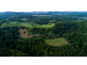 Absolute 362 Acre Farm Offered in Parcels featured photo 9
