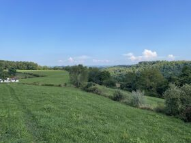 Absolute 362 Acre Farm Offered in Parcels featured photo 11