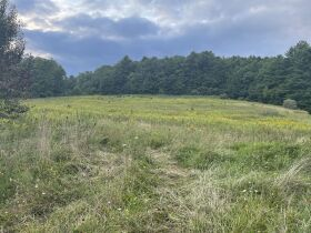 10 Acres - Hwy 67 W, Mountain City, TN featured photo 3