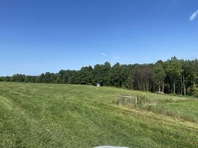 *Absolute Auction* 10+ Acres of Vacant Land featured photo 2