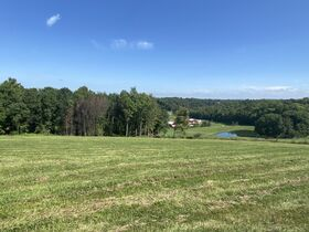*Absolute Auction* 10+ Acres of Vacant Land featured photo 3