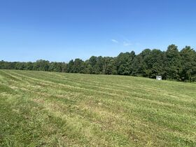 *Absolute Auction* 10+ Acres of Vacant Land featured photo 4
