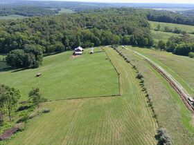 *Absolute Auction* 10+ Acres of Vacant Land featured photo 9