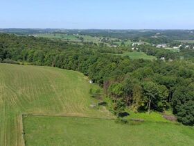 *Absolute Auction* 10+ Acres of Vacant Land featured photo 12