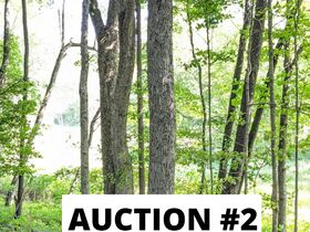 Holmes County Land Auctions- 27.74 Acres in 3 Locations featured photo 7