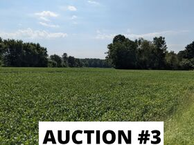 Holmes County Land Auctions- 27.74 Acres in 3 Locations featured photo 11
