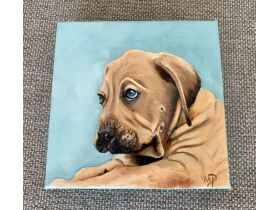 Warrick Humane Society Fall Online Benefit Auction featured photo 6