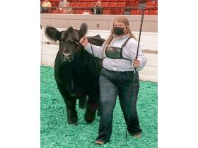 MEADE COUNTY FAIR 4-H YOUTH COUNTRY HAM AUCTION - Online bidding ends Thurs., Oct. 14th @ 5:00 PM EDT featured photo 10