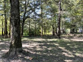 Duck Club/Home with 6.33 Acres +/- on Black River! featured photo 4