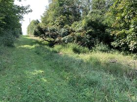 Absolute Berlin Area Land Auction featured photo 4