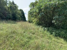 Absolute Berlin Area Land Auction featured photo 6