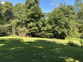 Northern Perry Co. Land Auction * 80 Acres sells Absolute featured photo 1