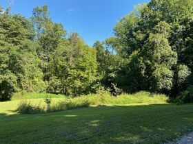 Northern Perry Co. Land Auction * 80 Acres sells Absolute featured photo 4