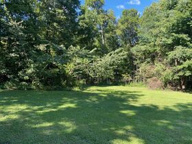 Northern Perry Co. Land Auction * 80 Acres sells Absolute featured photo 5