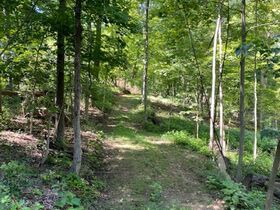 Northern Perry Co. Land Auction * 80 Acres sells Absolute featured photo 11