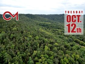 Selling Absolute! 160+/- Acres - Woods and Rolling Hills - ONLINE ONLY AUCTION ends Oct. 12th featured photo 1