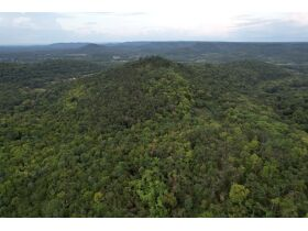 Selling Absolute! 160+/- Acres - Woods and Rolling Hills - ONLINE ONLY AUCTION ends Oct. 12th featured photo 3