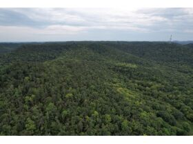 Selling Absolute! 160+/- Acres - Woods and Rolling Hills - ONLINE ONLY AUCTION ends Oct. 12th featured photo 5