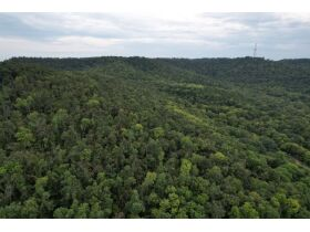 Selling Absolute! 160+/- Acres - Woods and Rolling Hills - ONLINE ONLY AUCTION ends Oct. 12th featured photo 6