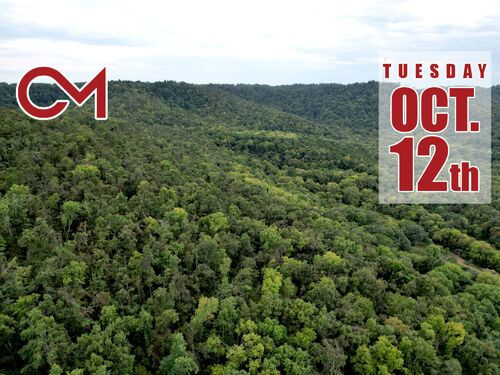 Selling Absolute! 160+/- Acres - Woods and Rolling Hills - ONLINE ONLY AUCTION ends Oct. 12th featured photo