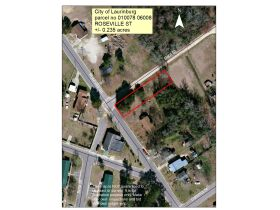 High Vista Golf Course Lot (Mills River) & Vacant Lot (Laurinburg) featured photo 2