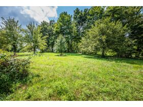 TWO HOMES ON 17.8 +/- ACRES; WHAT MORE CAN YOU ASK FOR? featured photo 8