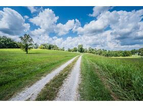 TWO HOMES ON 17.8 +/- ACRES; WHAT MORE CAN YOU ASK FOR? featured photo 9