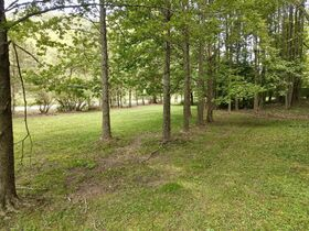 Dover Building Lot Auction featured photo 3